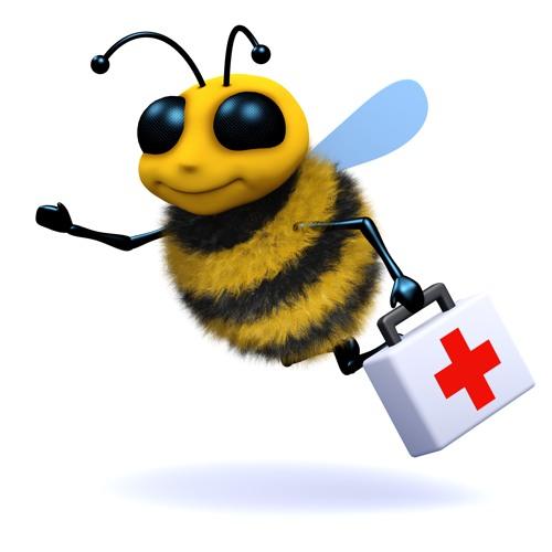 3d Bee medic
